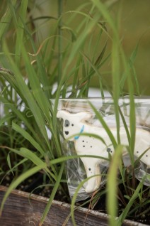 Hank cookie hiding in the grass